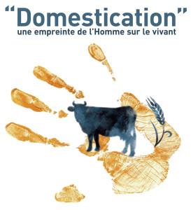 visuel-domestication